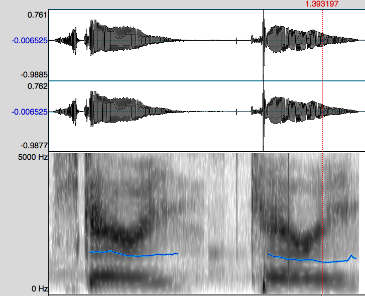 Sound waves for two words. The words appear to be one long series of zig zags in one view ans a series of vertical lines with horizontal bands in an another.